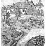 bauerngarten-hausgarten