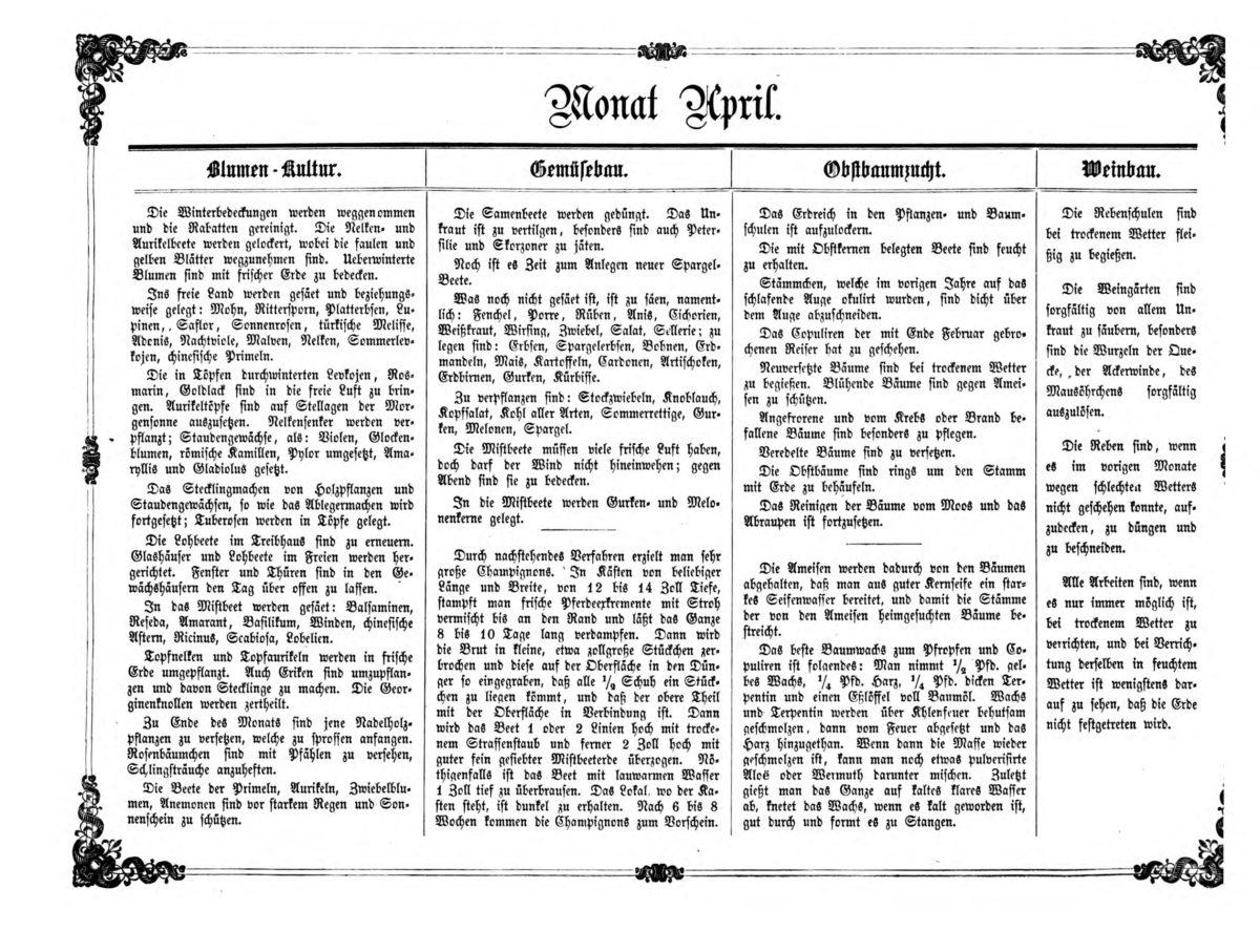 Gartenkalender für den Monat April von Carl Umlauff 1862 bestehend aus Blumenkultur, Gemüsebau, Obstbau und Weinbau