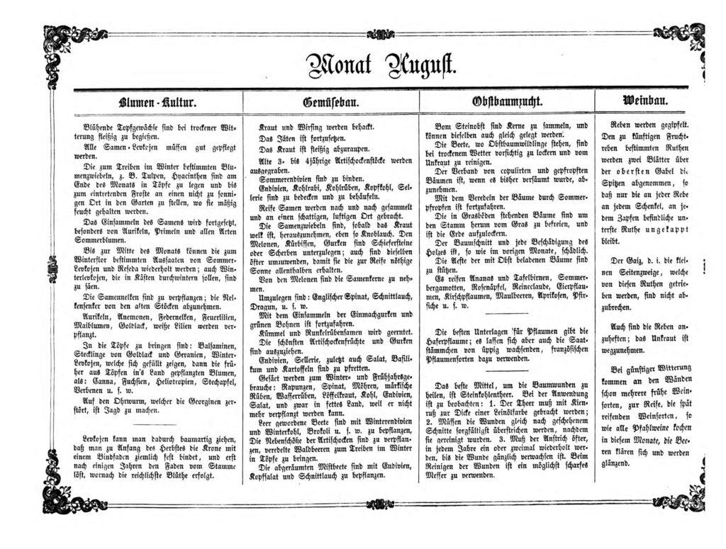 Gartenkalender für den Monat August von Carl Umlauff 1862 bestehend aus Blumenkultur, Gemüsebau, Obstbau und Weinbau