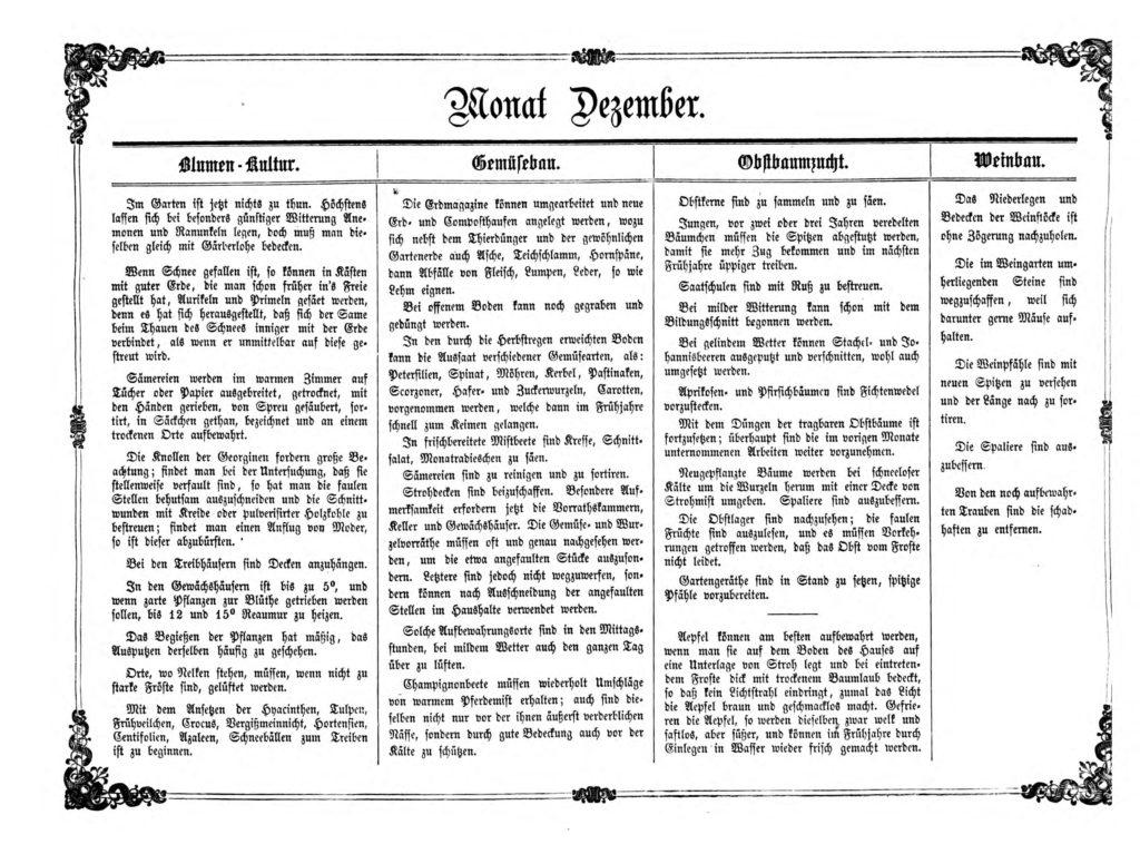 Gartenkalender für den Monat Dezember von Carl Umlauff 1862 bestehend aus Blumenkultur, Gemüsebau, Obstbau und Weinbau