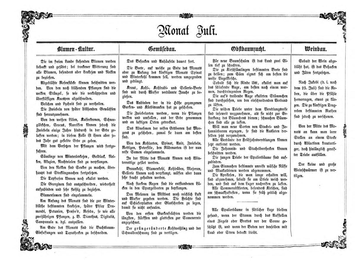 Gartenkalender für den Monat Juli von Carl Umlauff 1862 bestehend aus Blumenkultur, Gemüsebau, Obstbau und Weinbau