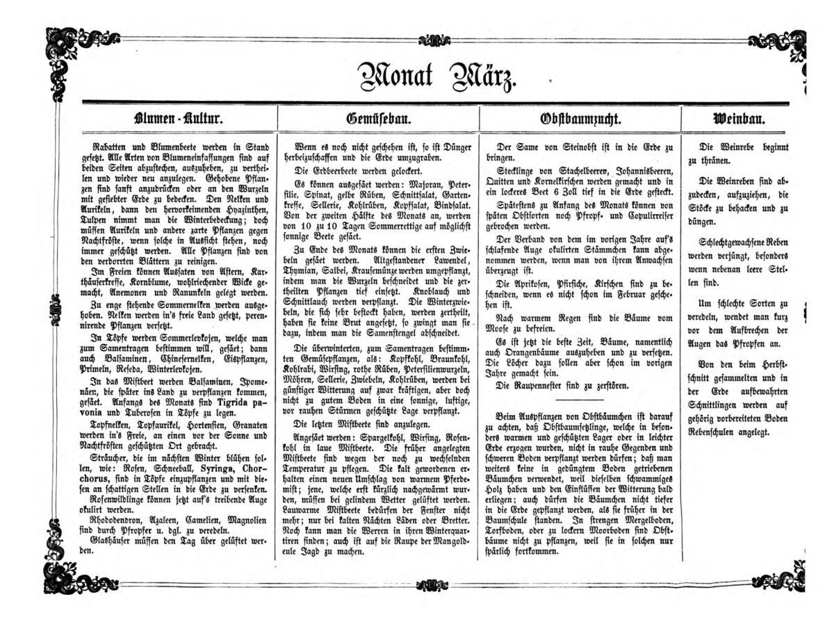 Gartenkalender für den Monat März von Carl Umlauff 1862 bestehend aus Blumenkultur, Gemüsebau, Obstbau und Weinbau