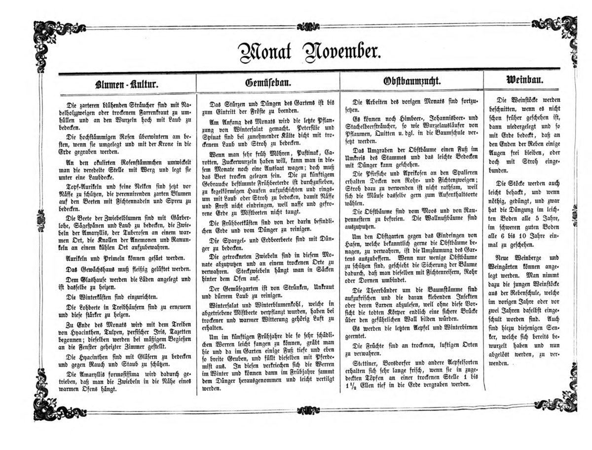 Gartenkalender für den Monat November von Carl Umlauff 1862 bestehend aus Blumenkultur, Gemüsebau, Obstbau und Weinbau