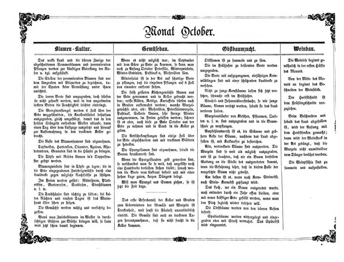 Gartenkalender für den Monat Oktober von Carl Umlauff 1862 bestehend aus Blumenkultur, Gemüsebau, Obstbau und Weinbau