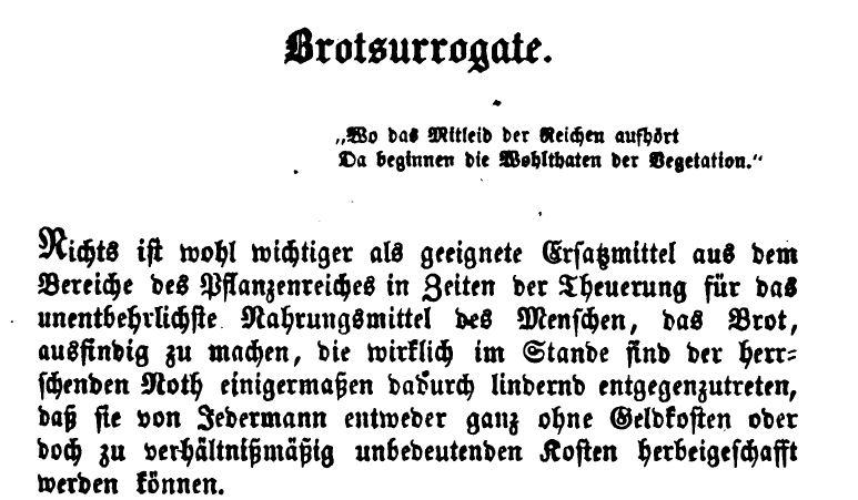 brot-backen-brotsurrogate-brotersetz-ohne-mehl