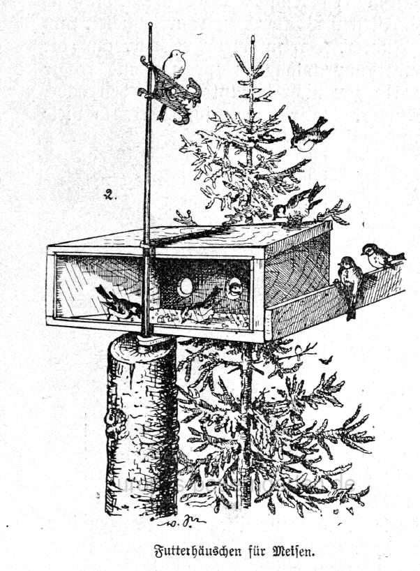 Das Bild zeigt ein Vogelhäuschen zur Fütterung von Meisen.