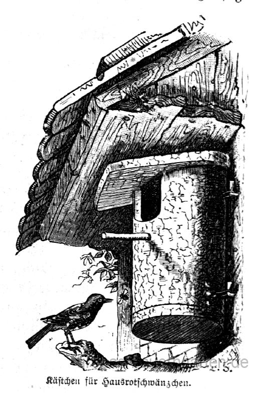 Das Bild zeigt einen Nistkasten für das Hausrotschhwänzchen.