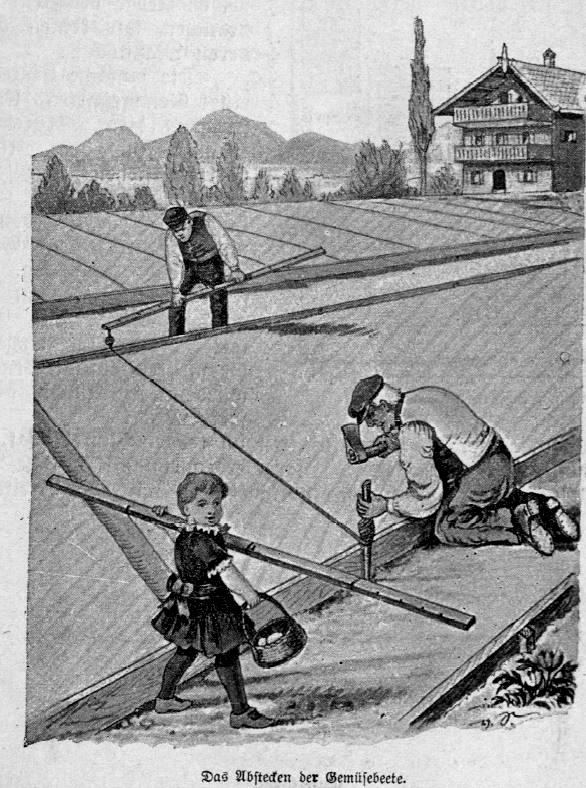 Das Bild zeigt Gärtner, die ihre Gemüsebeete einteilen.