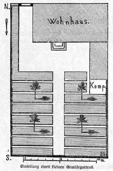 Das Bild zeigt einen Plan zur Einteilung eines Gemüsegartens.