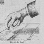 Das Bild zeigt eine Hand beim Säen von Gemüse.