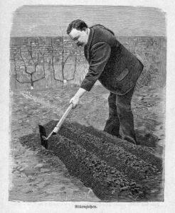 Das Bild zeigt einen Mensch, der Rillen für die Aussaat von Gemüse vorbereitet.