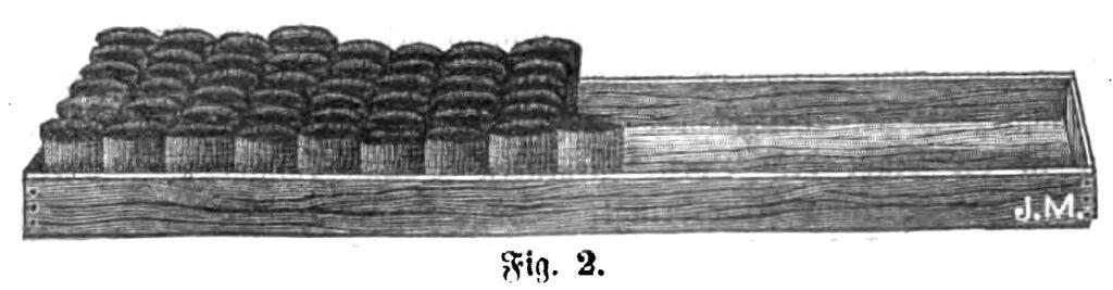 Das Bild zeigt einen Kasten zur Vorzucht von Pflanzen, indem sich die selbst hergestellten Anzuchttöpfe befinden.